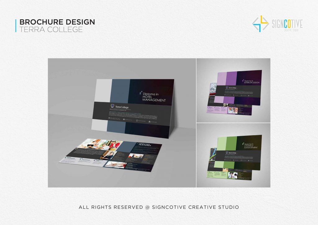 Terra College Brochure Design